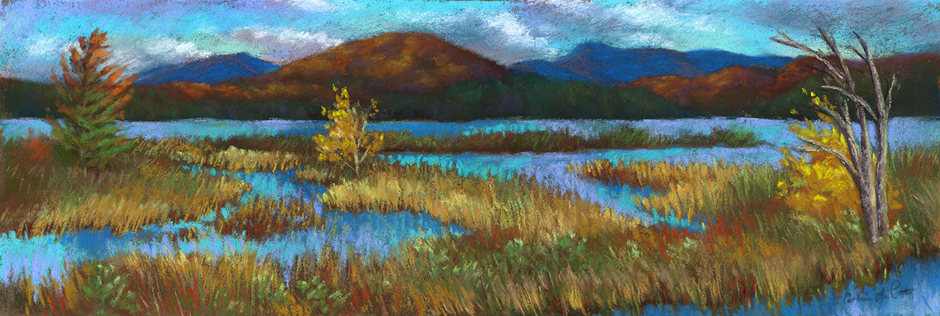 """Tupper Lake Marsh"" 6x19"" soft pastel, painted during the Tupper Lake Plein Air Festival 2020 (Available)."